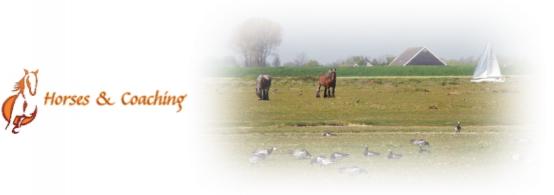 Horses & Coaching
